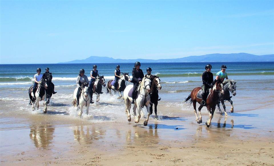 Stracomer View Holiday Homes horseback riding