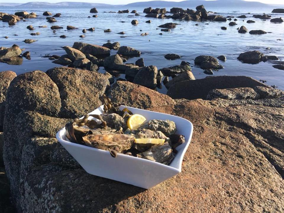 Connemara Coast Hotel Seafood