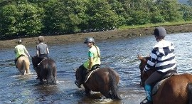 Ardmullen Oak Holiday Homes Horseriding