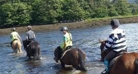 Ardmullen Oak Holiday Homes Horseriding