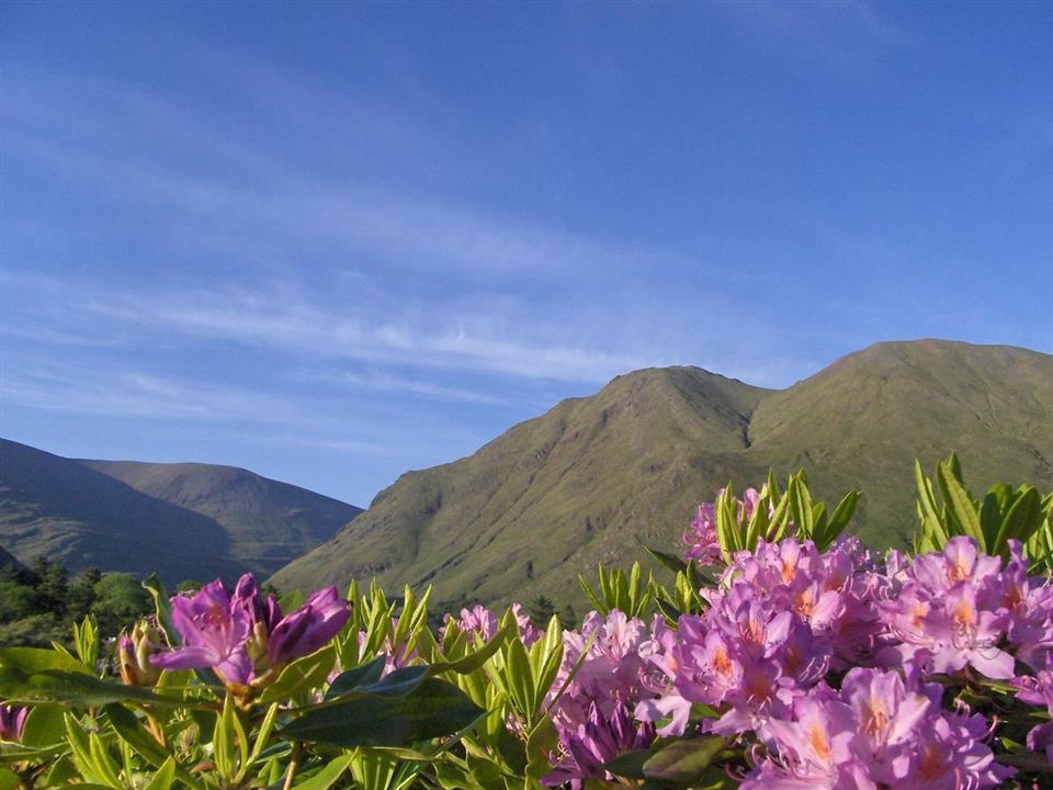 Delphi Mountain Resort Mountain view