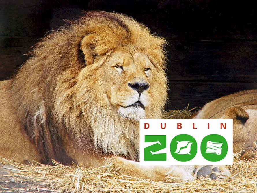 Camden Court Hotel dublin zoo