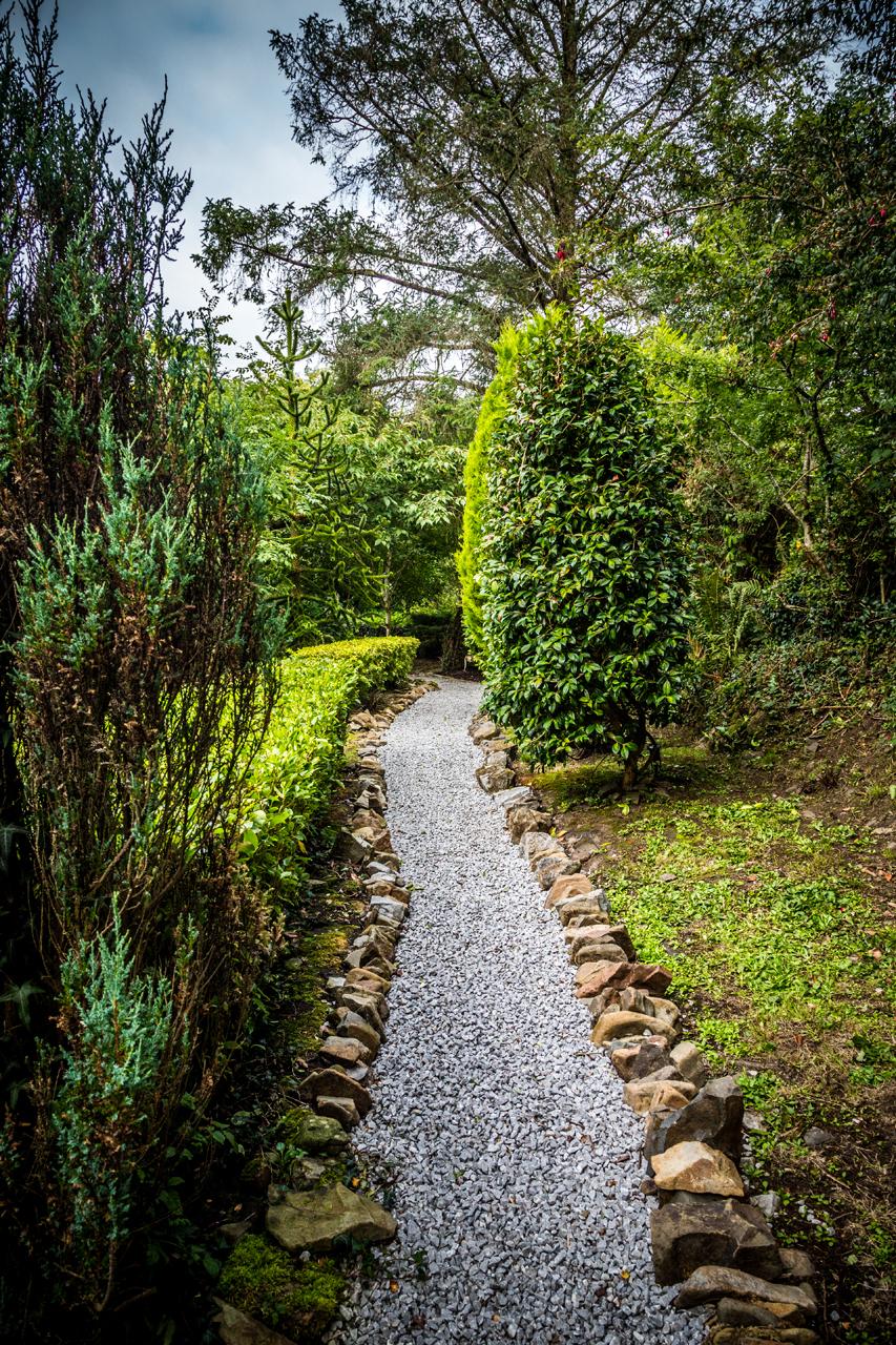 cottage mary rose garden walk