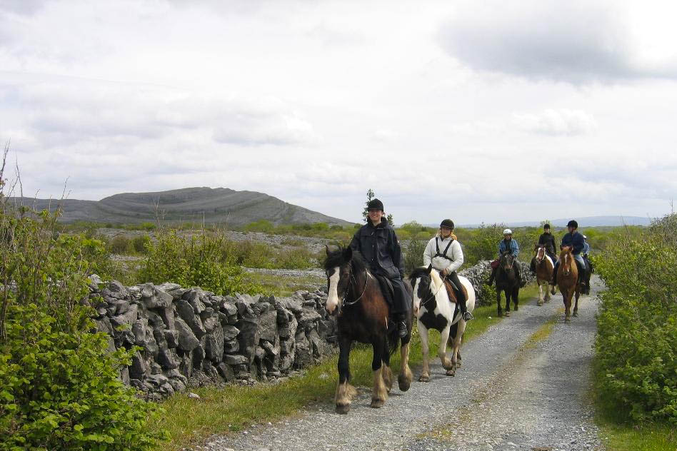 Lough Derg Thatched Cottages horse riding