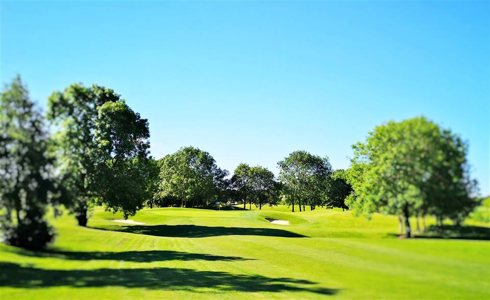 Roganstown Hotel Golf & Country Club Golf Course