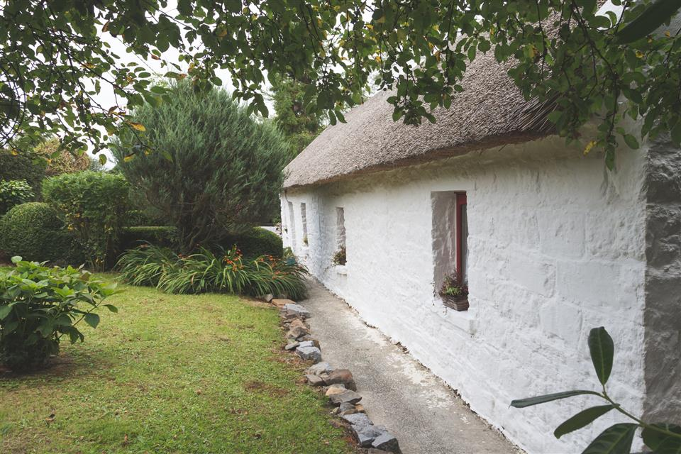 cottage mary rose exterior