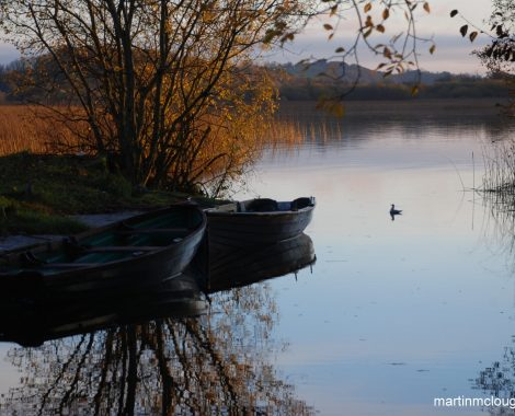 Lough Derg Thatched Cottages boat