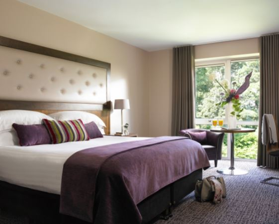 Dunboyne Castle Hotel & Spa Double Bedroom