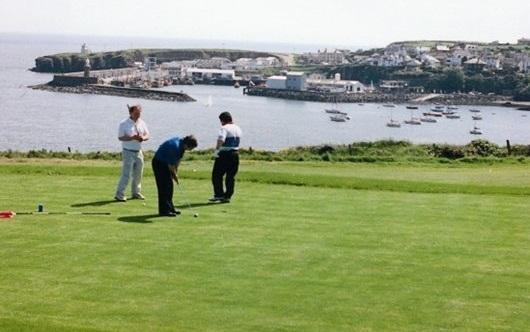 Seacliff Holiday Homes golf